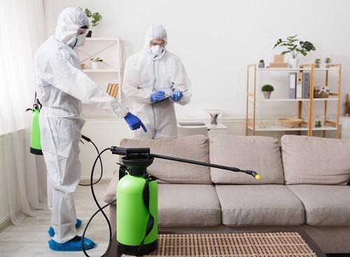 société de nettoyage à Nice